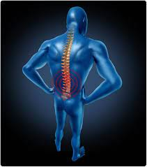 Clinical and Electrophysiological Aspects in Children with Spinal Muscular Atrophy Type 1, 2 and 3 before Treatment